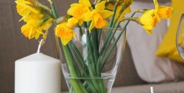 Świeże kwiaty cięte – jak dłużej cieszyć nimi oko w naszym domu!